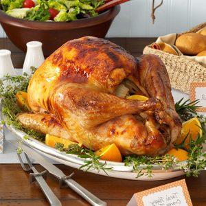 Happy Orange Turkey