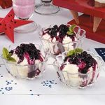 Blueberry Ice Cream Topping
