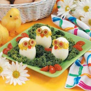 Cute Egg Chicks