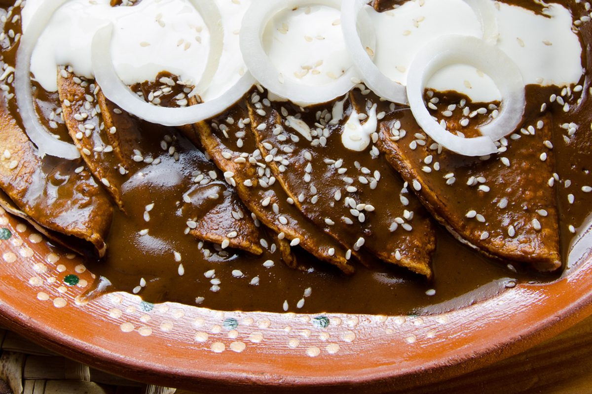 Traditional mexican enchilada with mole salsa close up
