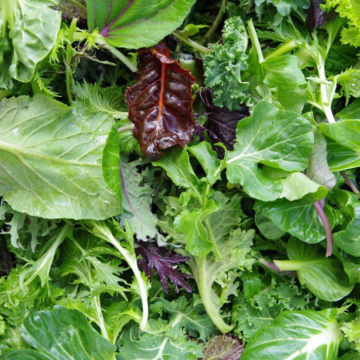Fresh mixed salad field greens piled closeup view; Shutterstock ID 532050646; Job (TFH, TOH, RD, BNB, CWM, CM): Taste of Home
