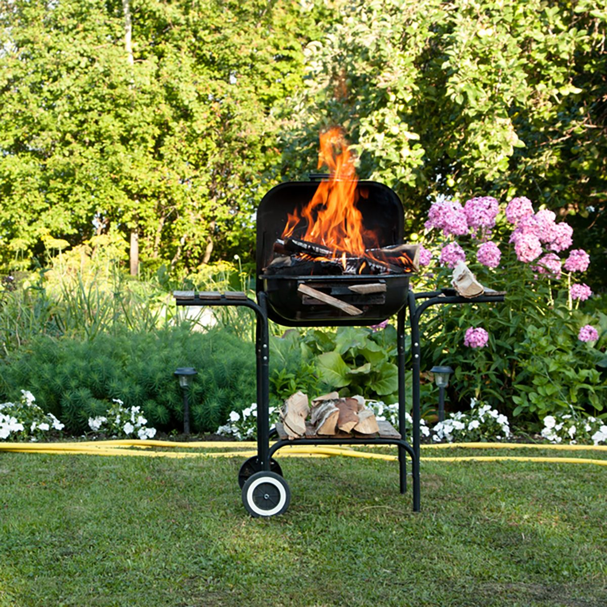 Flames burning in a barbecue standing in a pretty garden as the coals are prepared for grilling an array of meat for a lunchtime cookout;