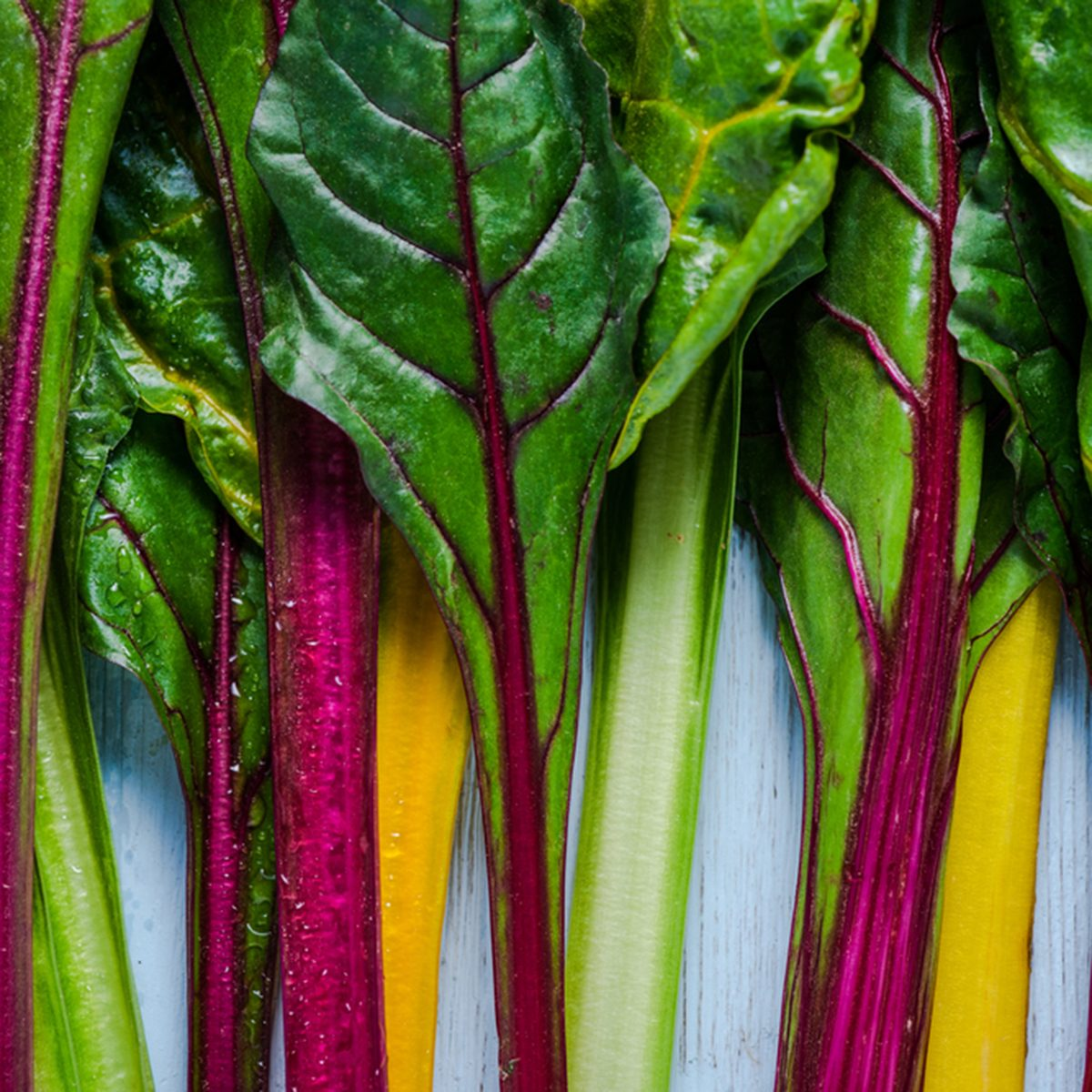 swiss rainbow chard