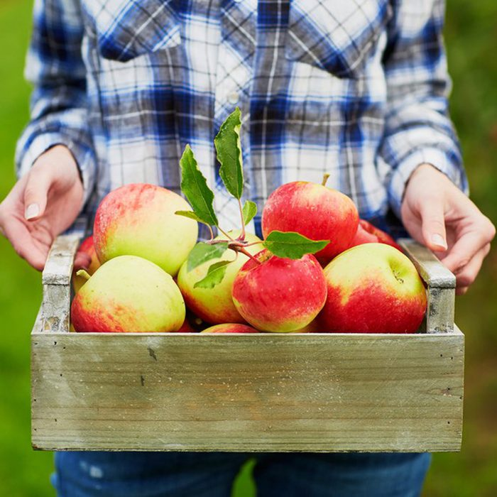 Woman holding crate full of apples