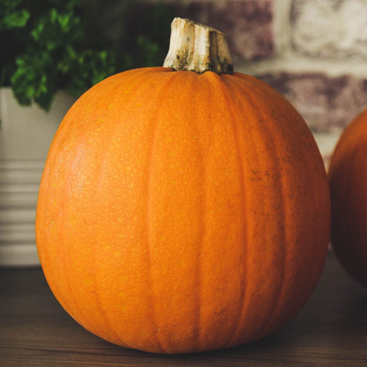 Pumpkins - food themes