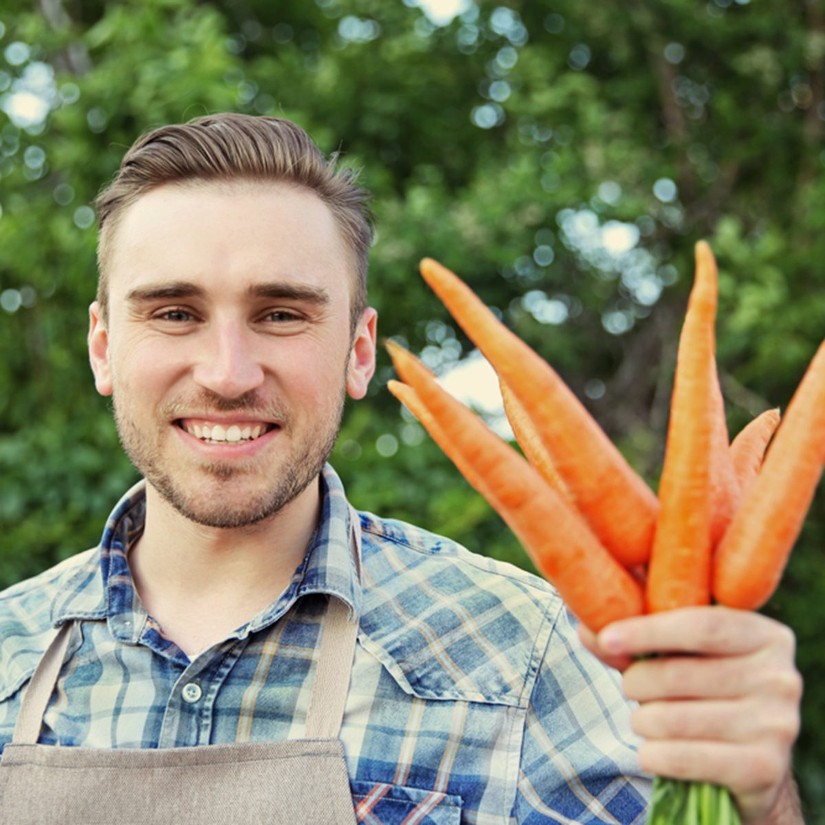 Handsome man with carrots in green garden