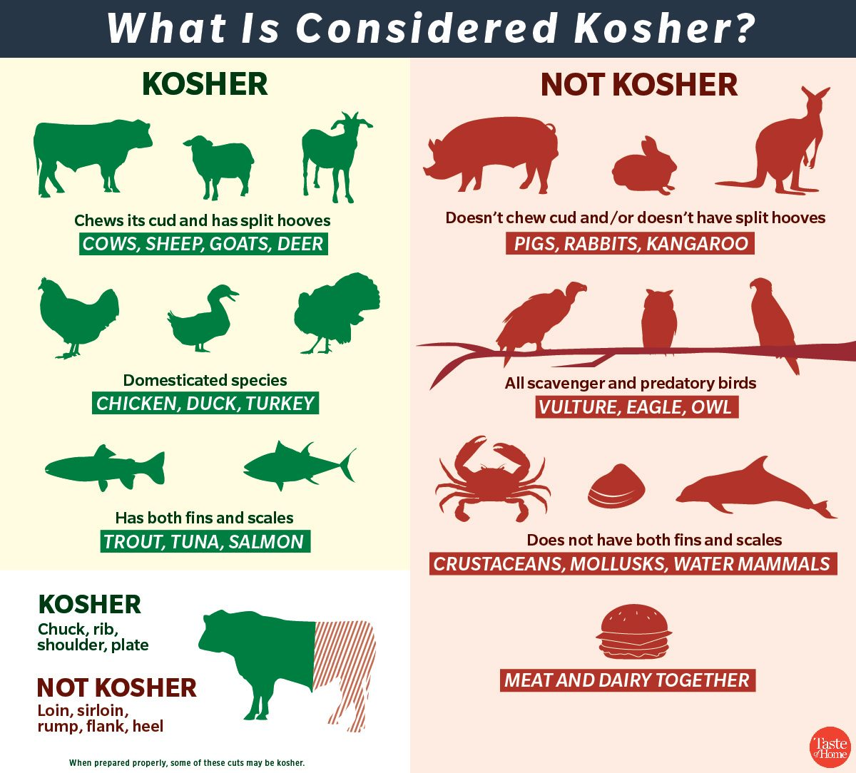 graphic displaying kosher vs non kosher foods