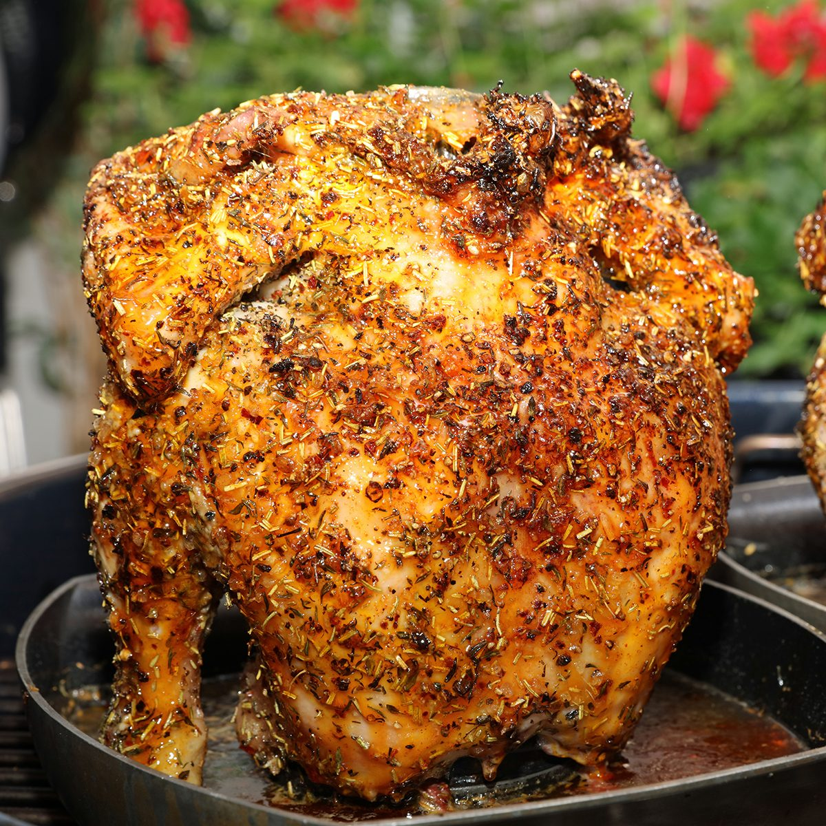 Fresh roasted Beer Can Chicken closeup