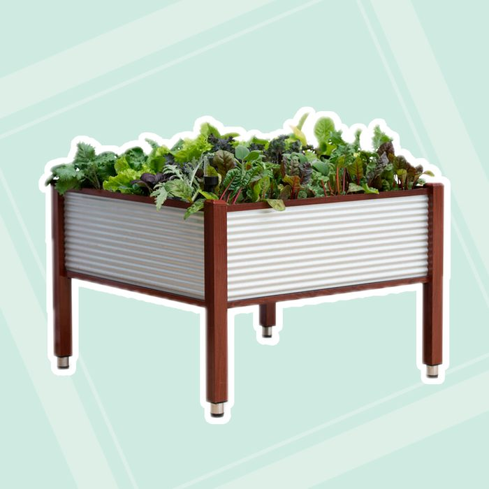 """Galvanized Self-Watering Elevated Bed, 45"""" x 45"""""""