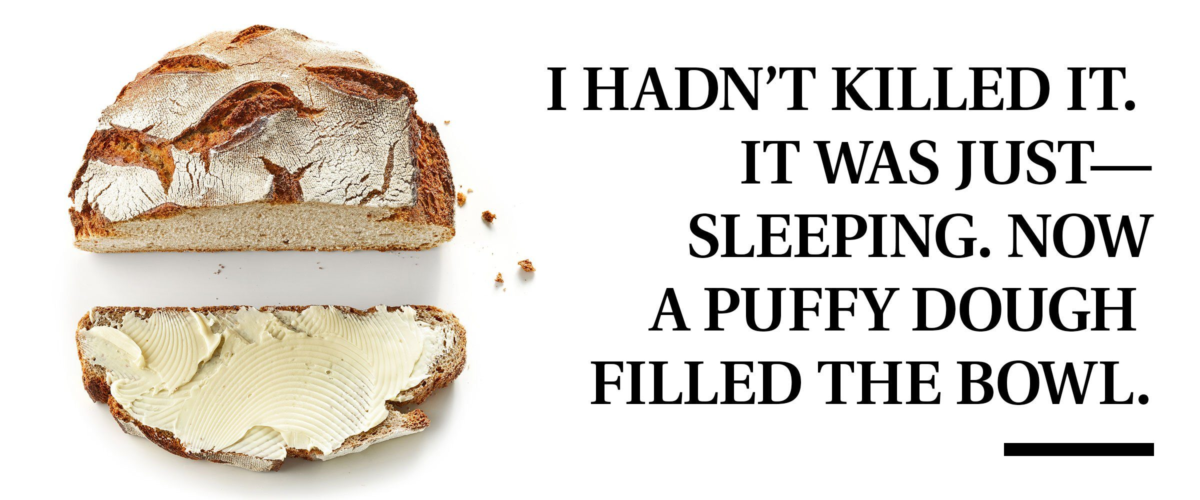 """bread with pull quote text: """"I hadn't killed it. It was just-sleeping. Now a puffy dough filled the bowl."""""""