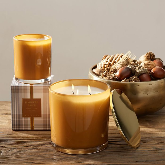 Harvest Spice Scent Collection